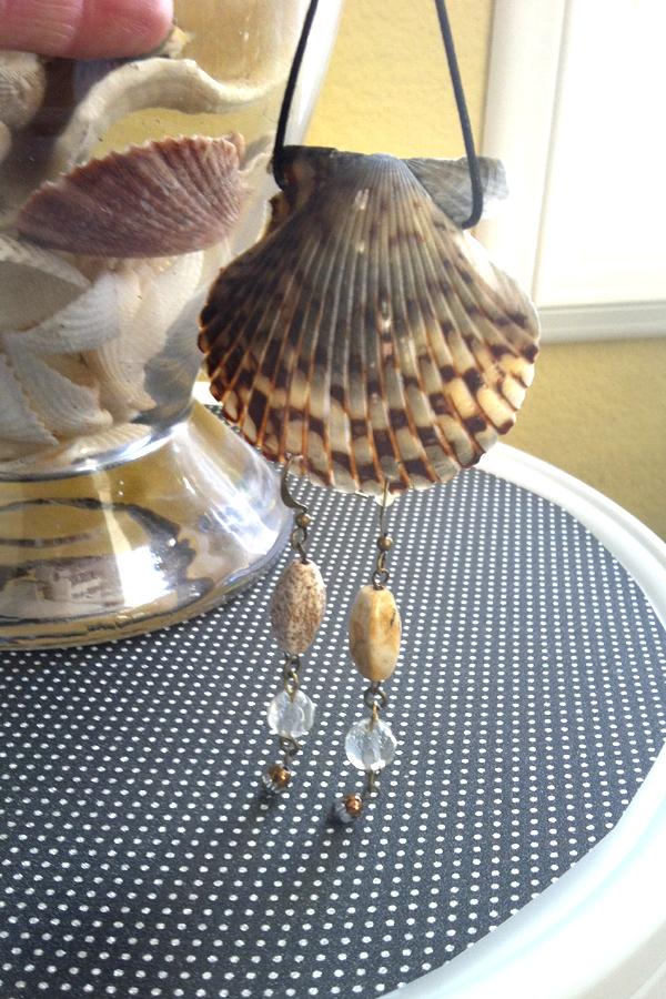Shell Earring Display