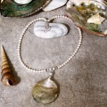 Wire Wrapped Sea Shell Necklace by Elizabeth