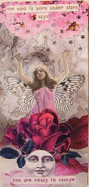 carolina-fairy-oracle