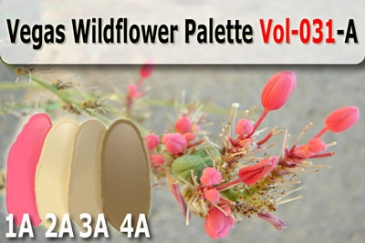 Vegas wildflower palette polymer clay color recipe