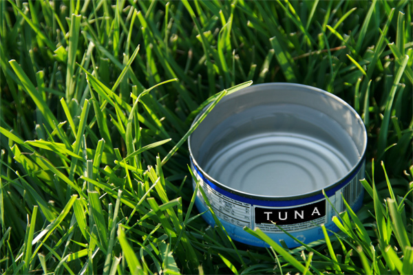 Tuna Can Tip