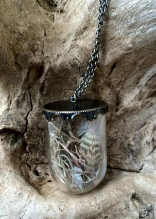 Hidden Gems Cloche Terrarium Necklace