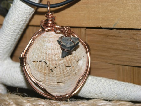 Wire wrapped fossilized shell with shark's tooth.