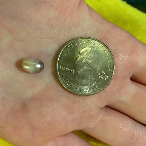 What Type of Pearl Is This, and How Much Might It Cost?  - Discussion on Jewelry Making Journal