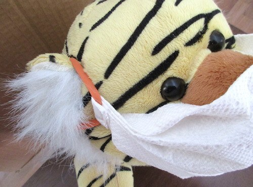 DIY Paper Towel Face Mask by Noreen (Rena's Mom)  - featured on Jewelry Making Journal